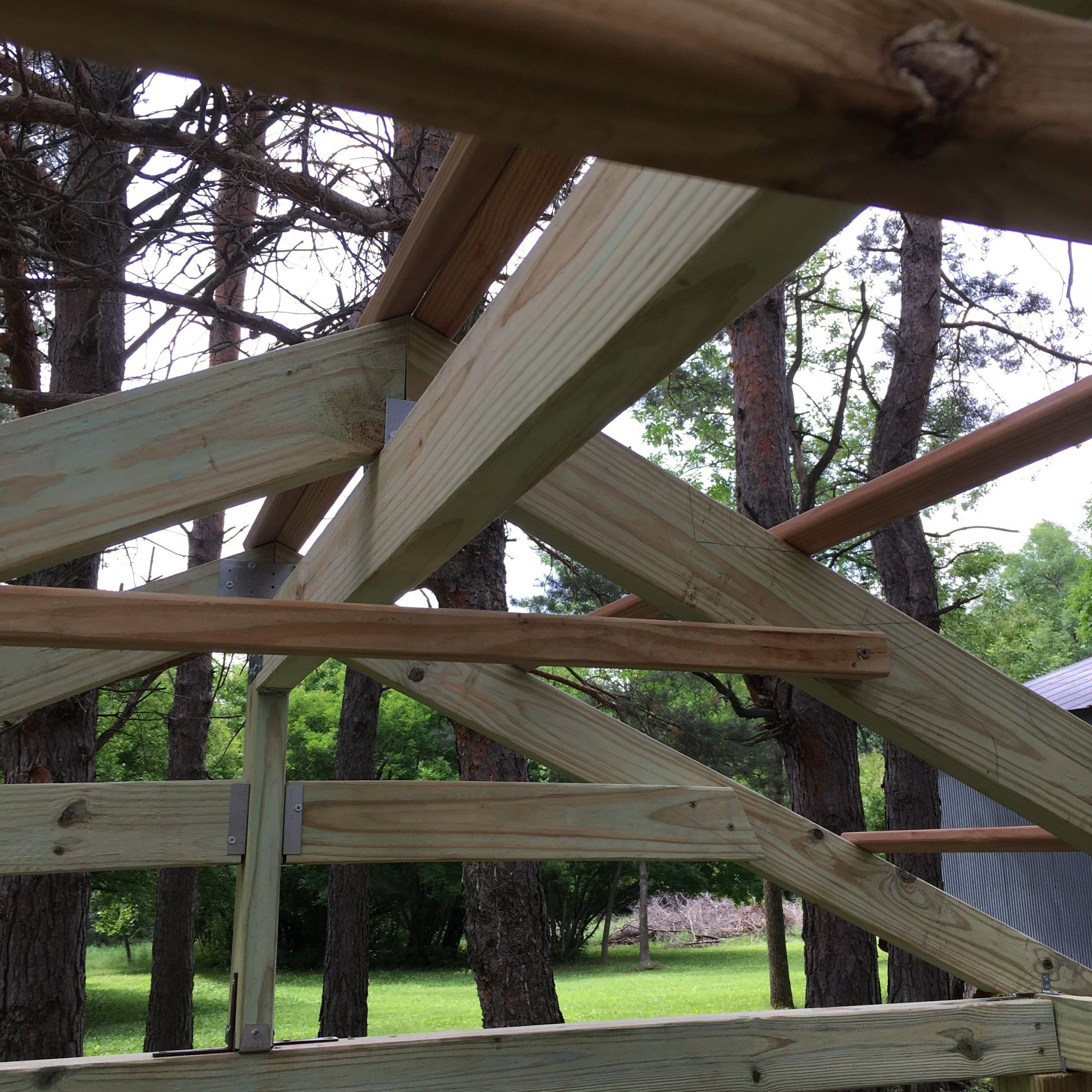 10-roof trusses and purlins.jpg
