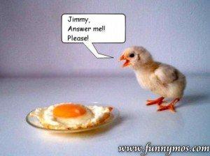 1790110813-chicken.jpg