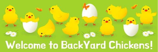 1byc-hatching-chicks.png