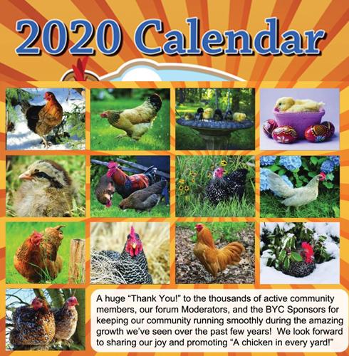 2020 Calendar 2.jpg