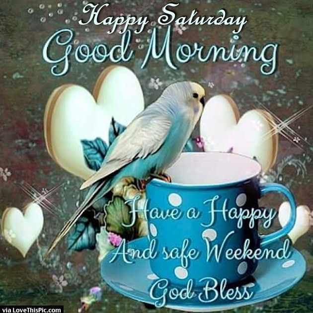 250836-Happy-Saturday-Good-Morning-Have-A-Safe-Weekend.jpg