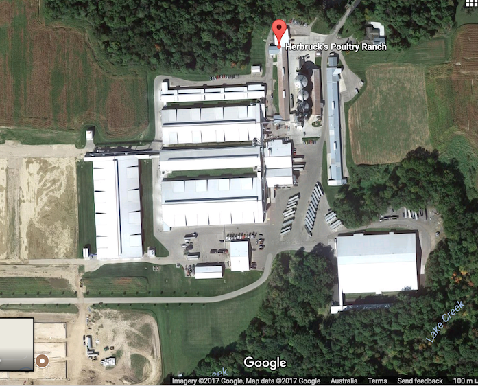 4. Chicken Factory Farm - Herbruck's Poultry Ranch.png