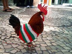 6cb2c056aaa5f7f3462402d634eca70b--crochet-chicken-urban-homesteading.jpg