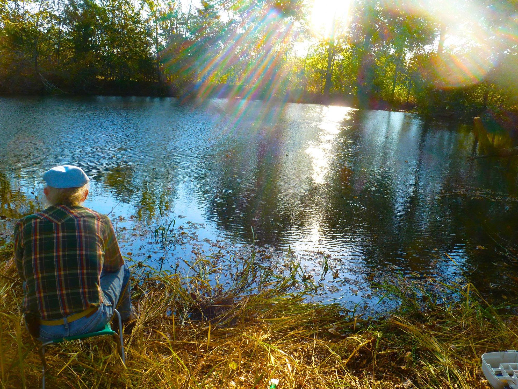 a pond.jpg