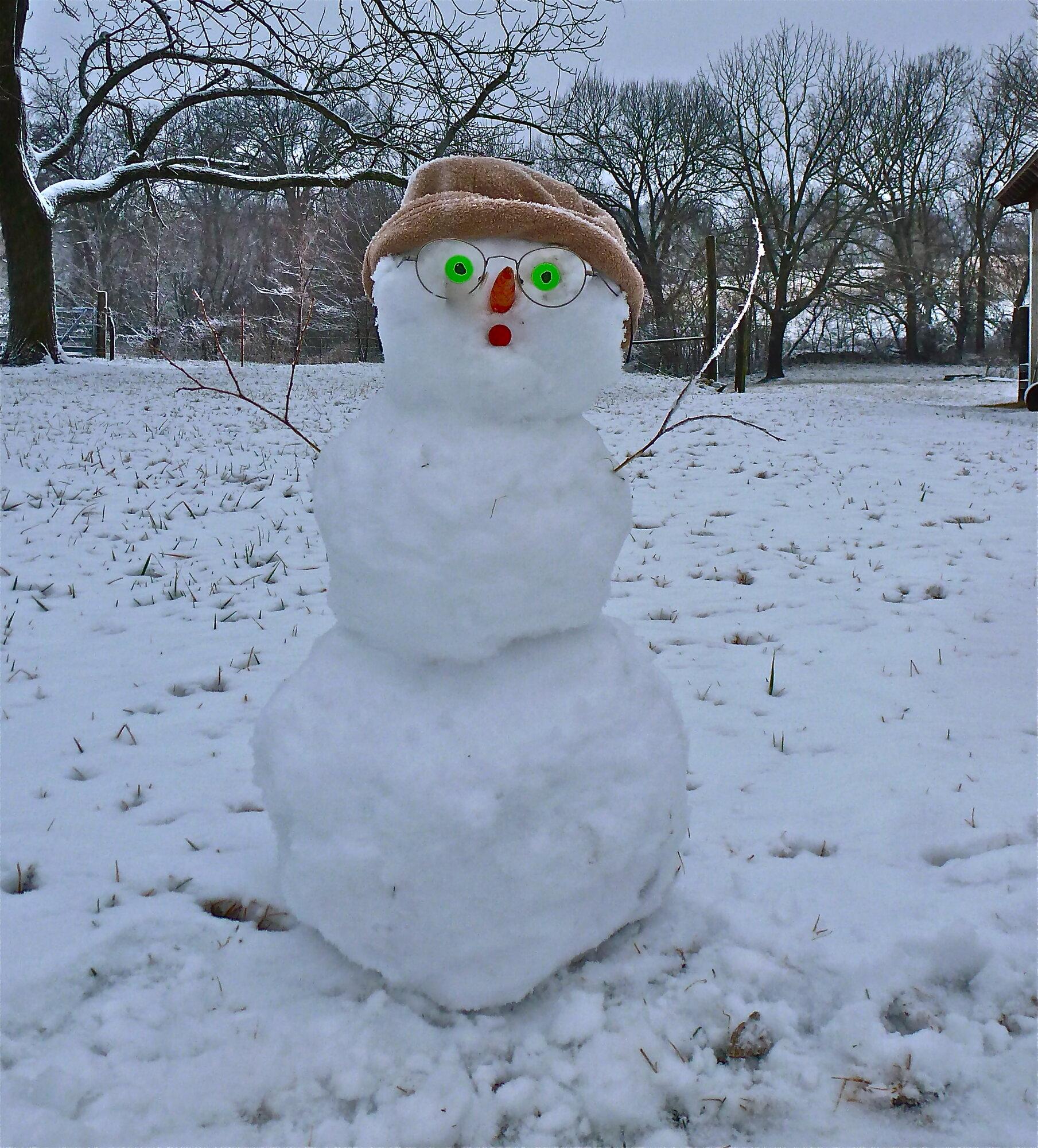 a snowman.jpg