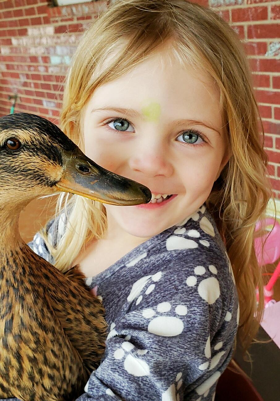 aviary-image-1559432961696.jpeg