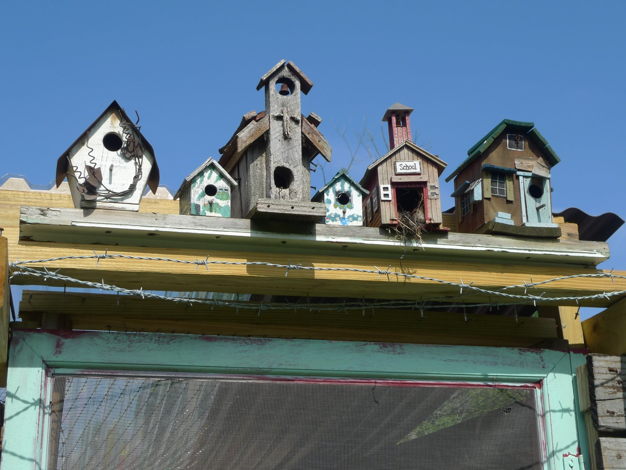 bird houses.JPG