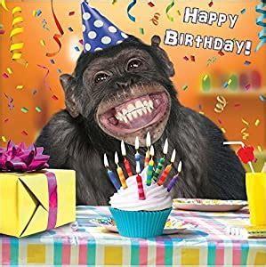 birthday chimp.jpg