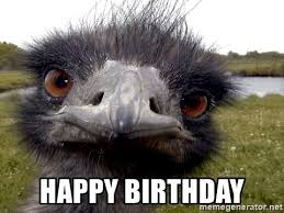 birthday emu_2.jpg