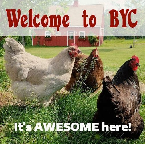 byc-awesome.jpg