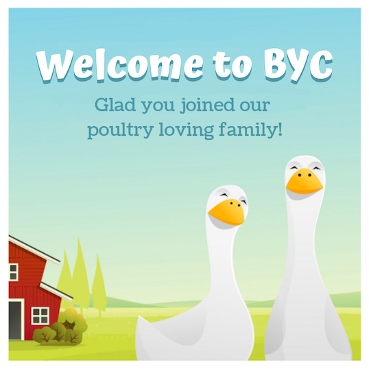 -byc-duck-goose.png
