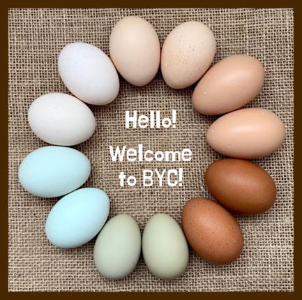 -byc-egg-circle2.png