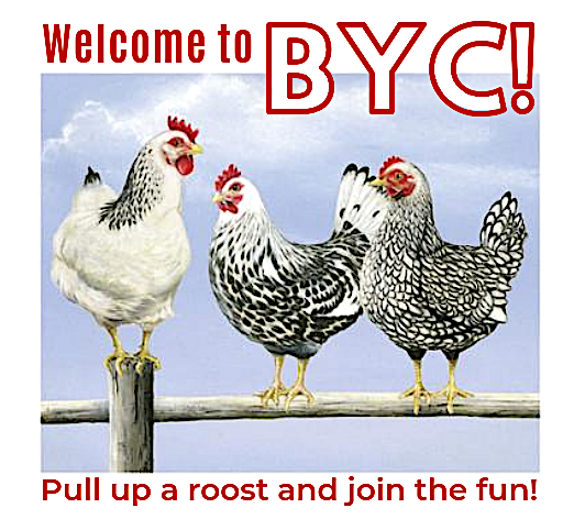 -byc-join-fun.png