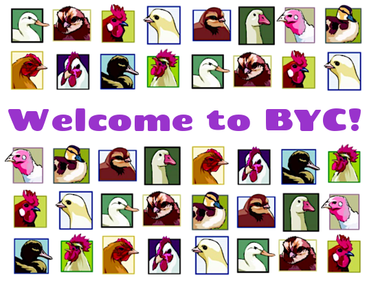 byc-mixed.png