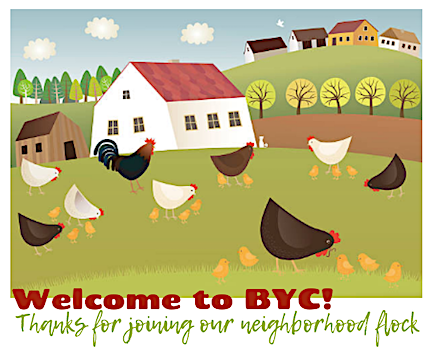 -byc-neighbor-flock.png