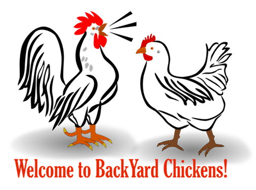 byc1-rooster-hen.png