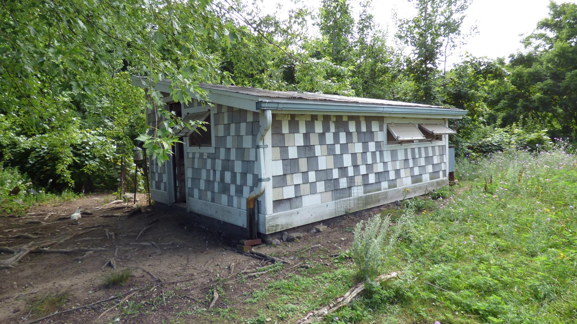 chicken coop 002.JPG