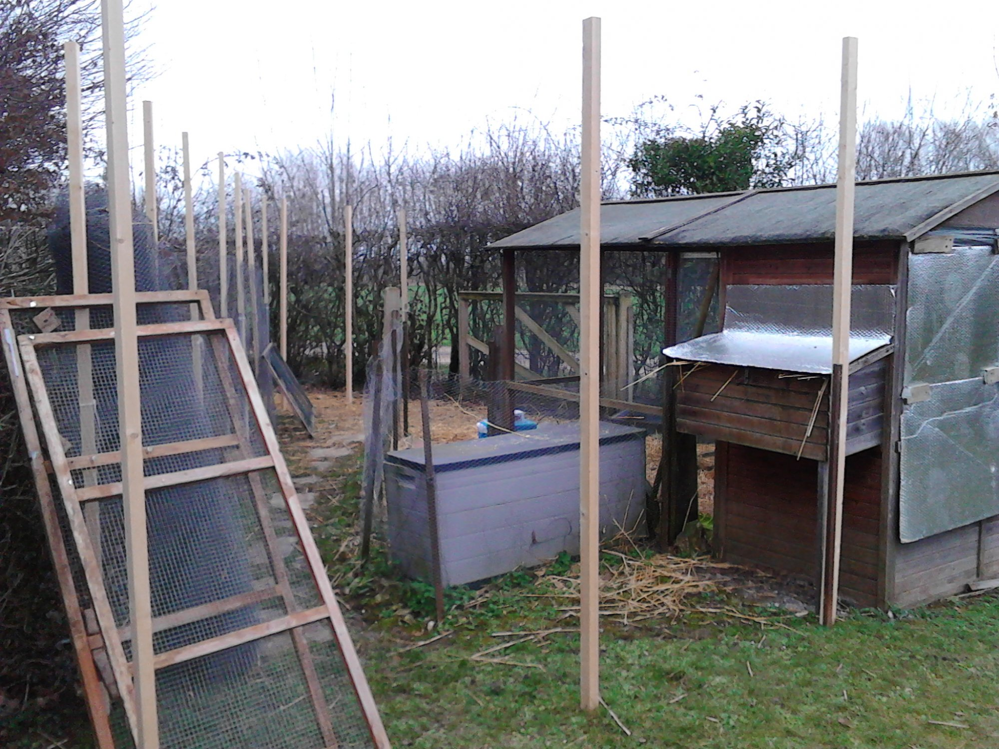 chicken enclosure hammering in the posts for the _PumpjackPiddlewick.jpg