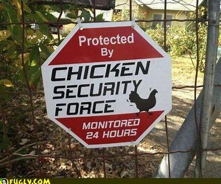 chicken guard.jpg