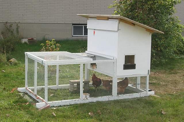 Chicken-Tractor-004.jpg