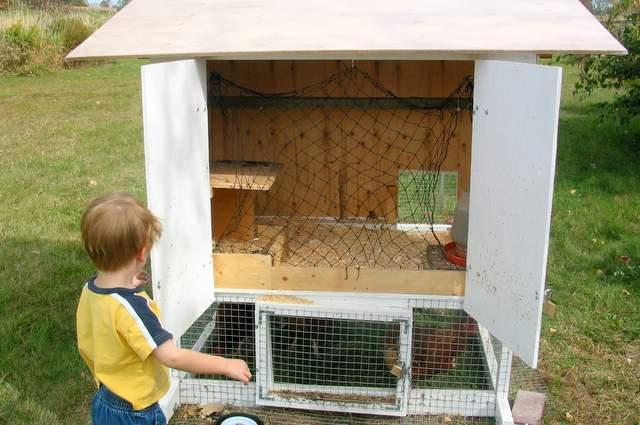 Chicken-Tractor-017.jpg