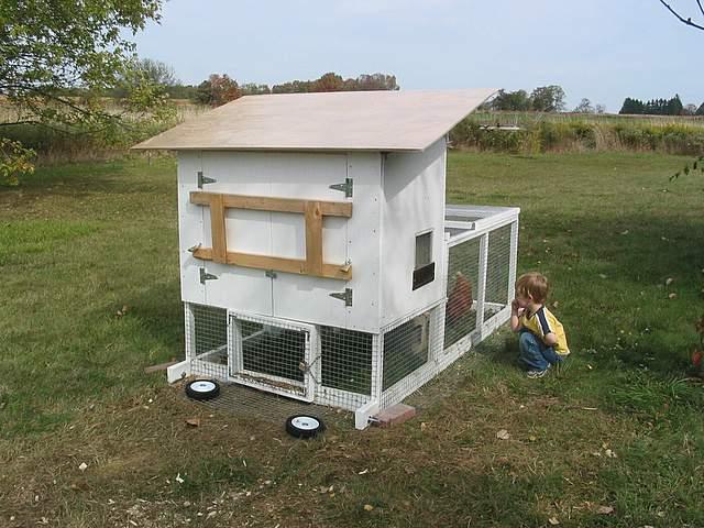 Chicken-Tractor-033.jpg