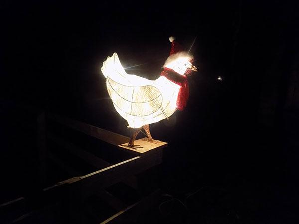 chicklit2.jpg