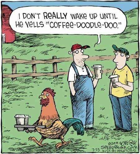 Coffee Doodle Doo.jpg