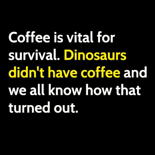 coffee survival.jpg