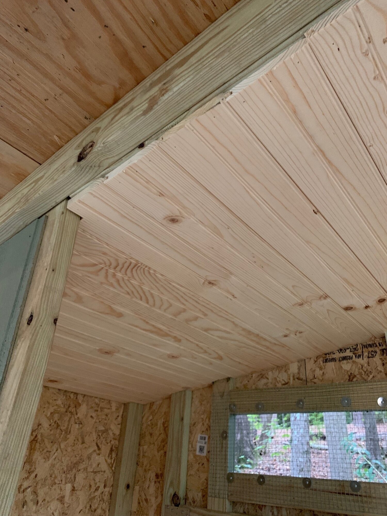 coop_ceiling.jpg