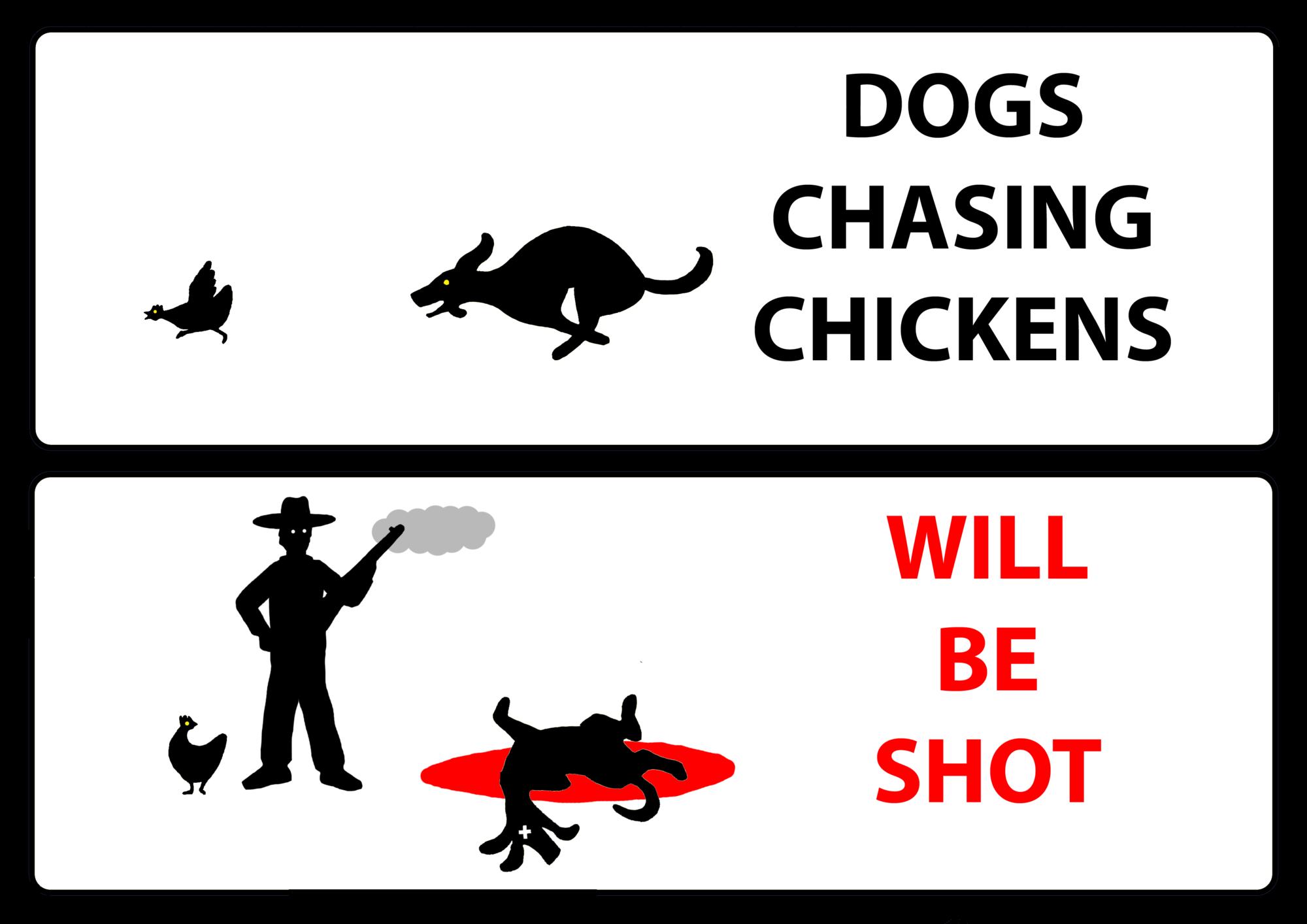 DOGSSHOT.png