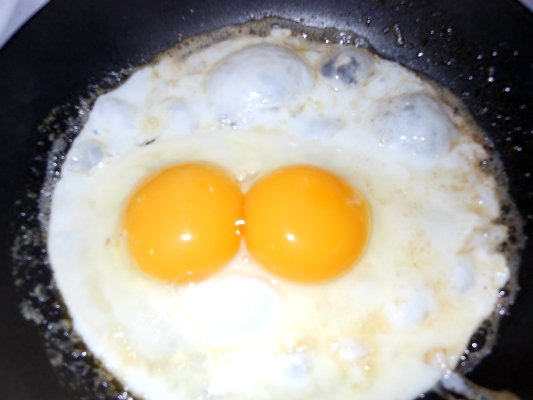 Double yolk egg for byc.jpg