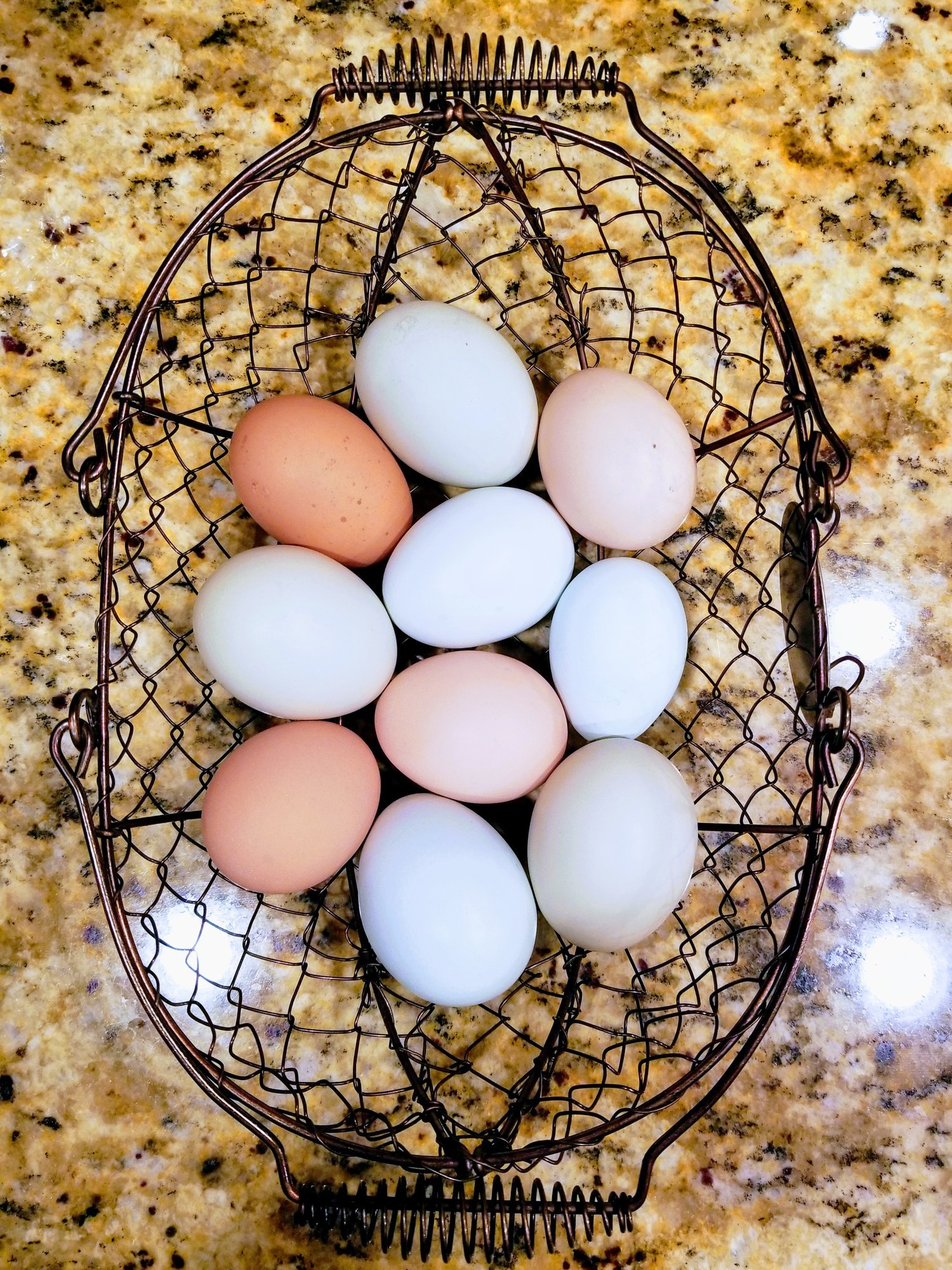 Egg basket 1.jpg