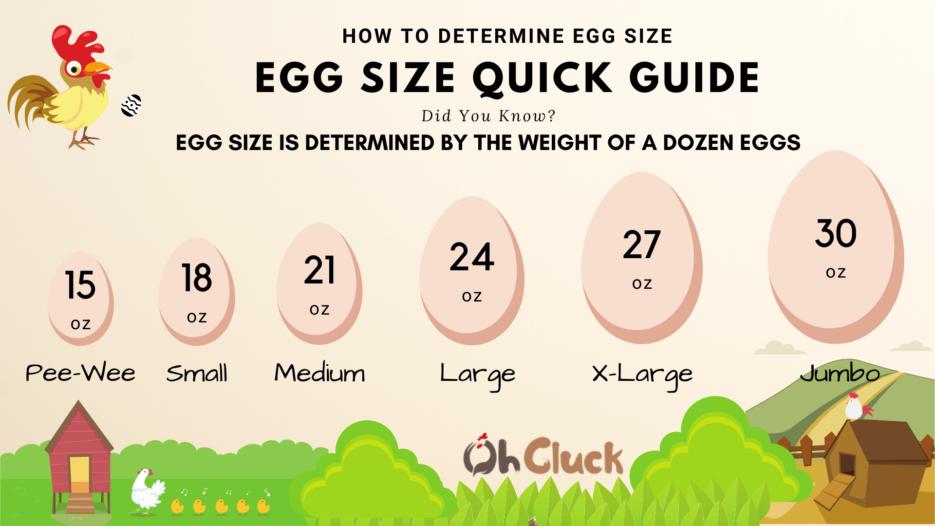 Egg Size Chart (1).png
