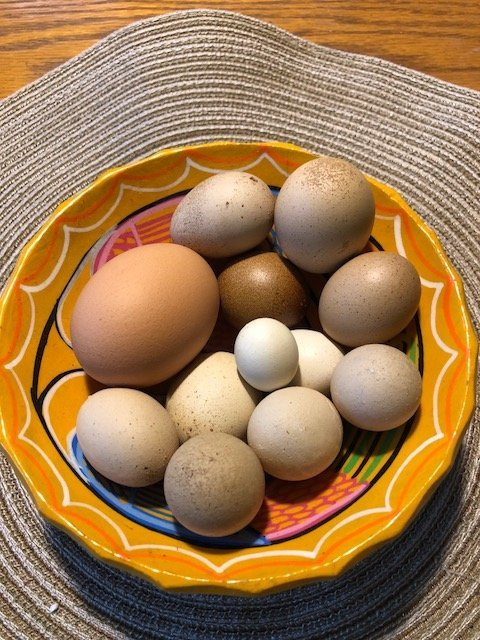 Fairy Eggs.jpg