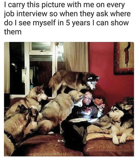 @funny-job-interview.jpg