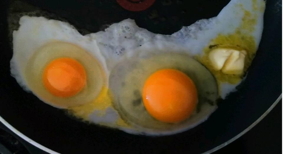 Giant Egg1.jpg