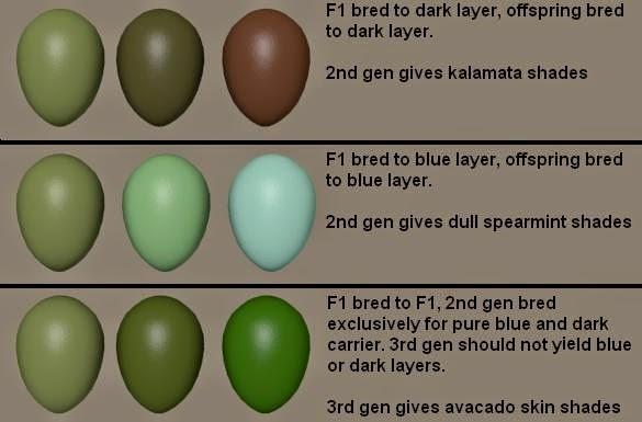 green eggs.jpeg