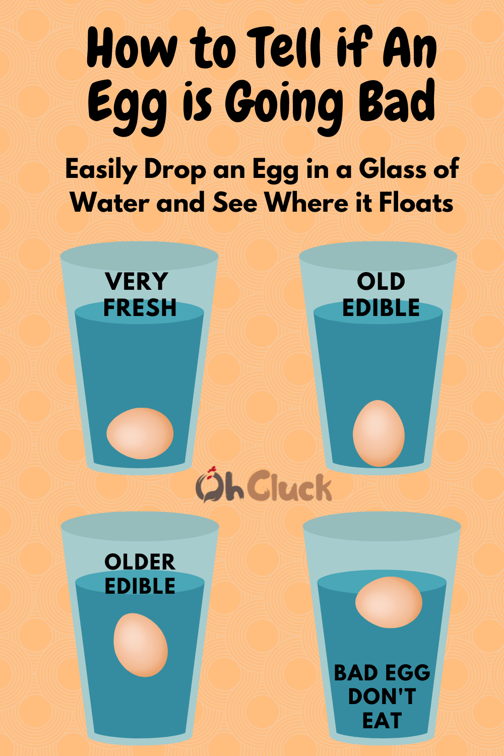 How to Tell if An Egg is Going Bad_ (1).png