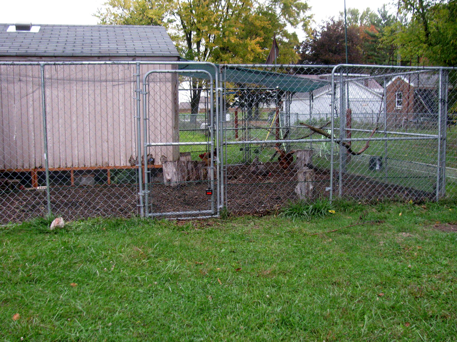 Kennel Run from Back 2.jpg