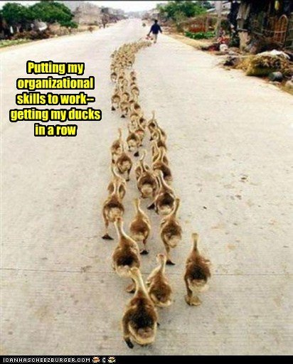kind-of-like-the-pied-piper.jpg
