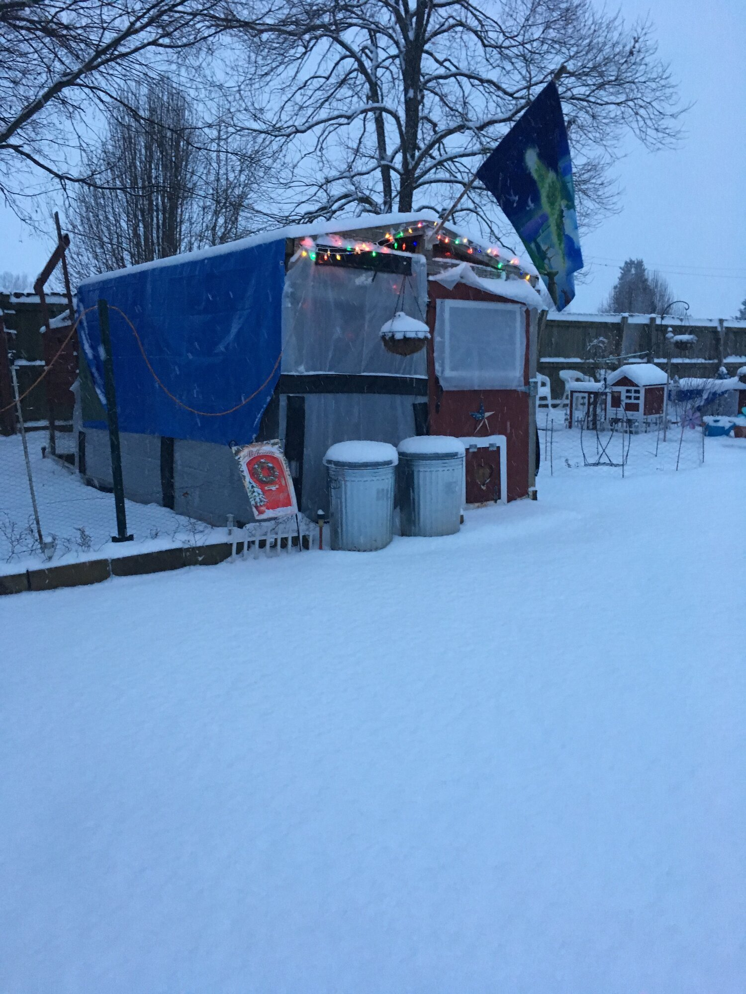 klucker snow.jpg
