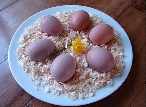 langshan eggs.jpg