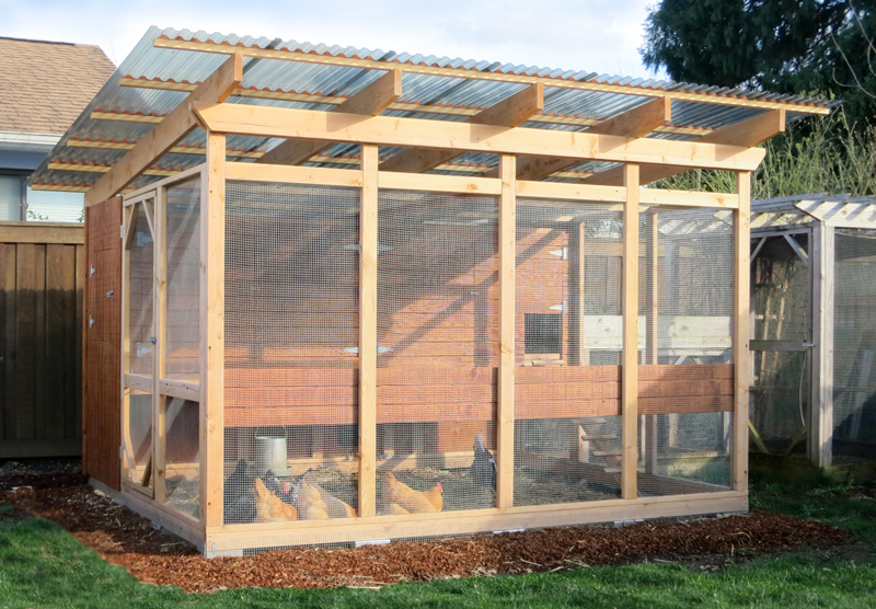 large-backyard-chicken-coop.jpg