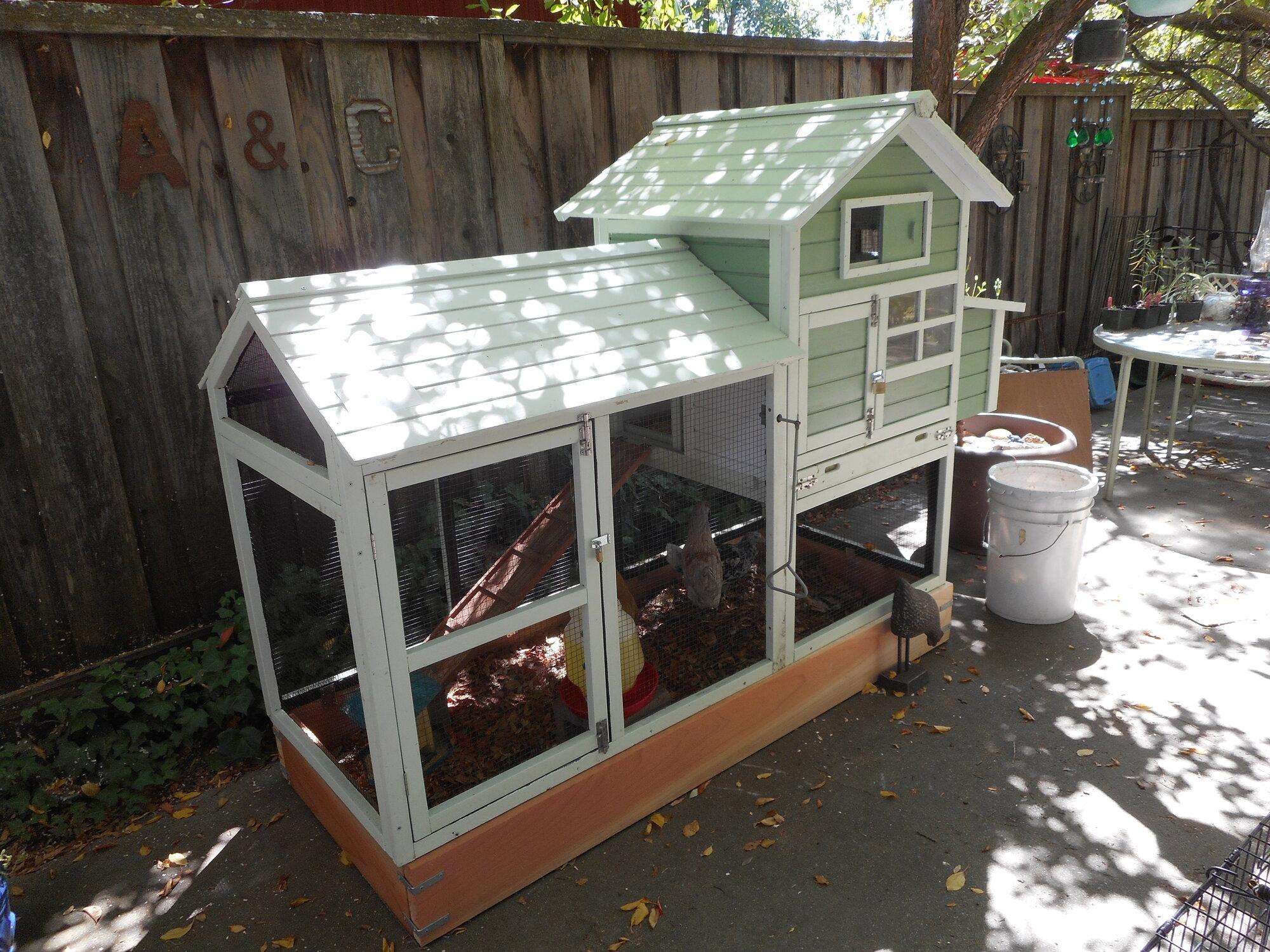 little house on the patio 8:19.JPG