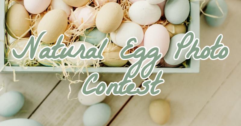 Natural Egg Photo Contest.jpg