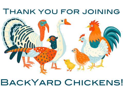 poultry-pheasant-quail-BYC.png