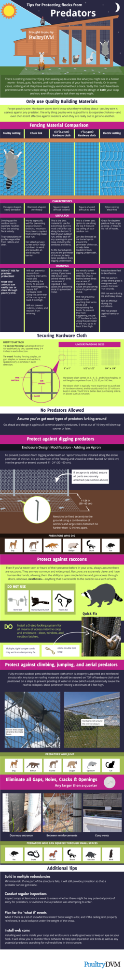 poultrydvm-infographic-protecting-flocks-from-predators.png