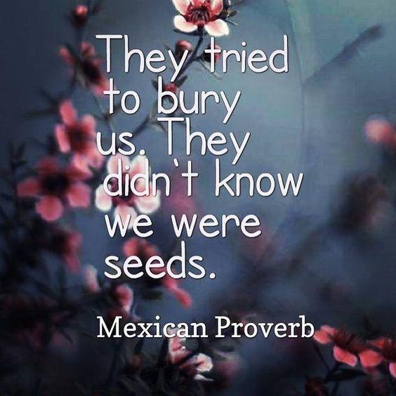 quote-tried-to-bury-us.jpg