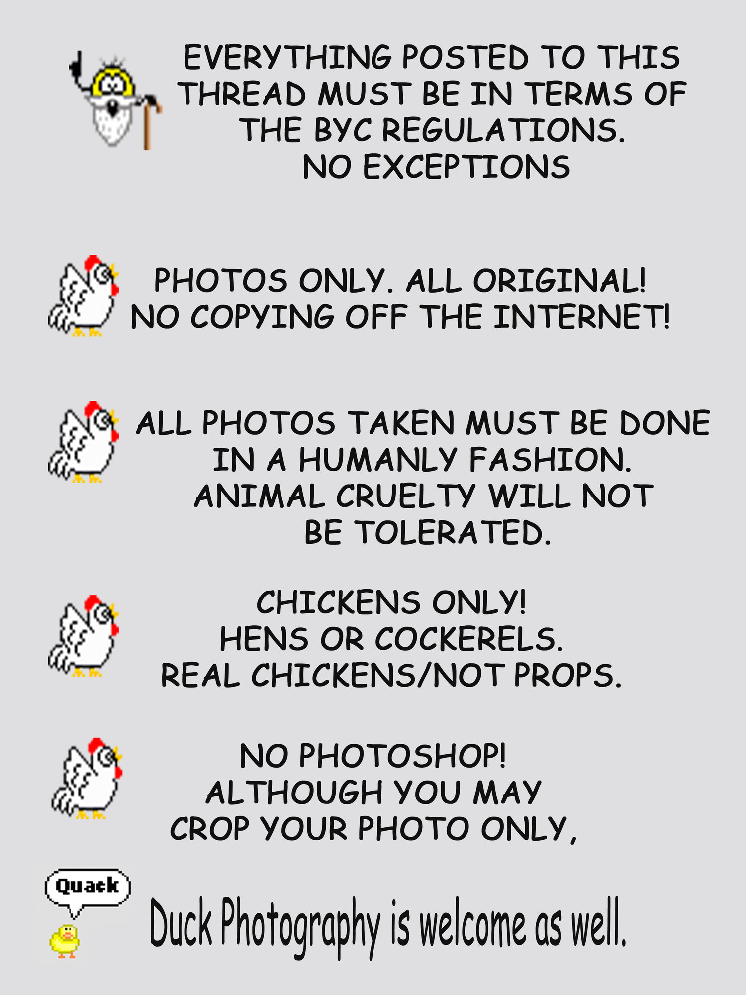 RULES CONTEST 2 revised for ducks.jpg